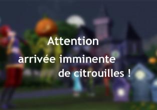 Attention arrivée imminente de citrouilles !